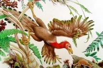 Un Archeopteryx